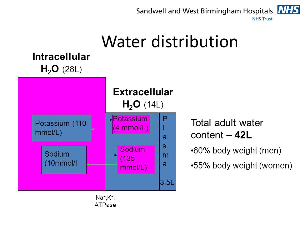 Water Deprivation Test (2) End points: serum osmo > 300 mosm/L or >5 % loss of body weight – Urine osmo > 600 mosm/L DI excluded – Urine osmo < 200 mosm/L DI diagnosed – Urine osmo 200-600 equivocal If DI diagnosed, synthetic ADH (DDAVP) given nasally.