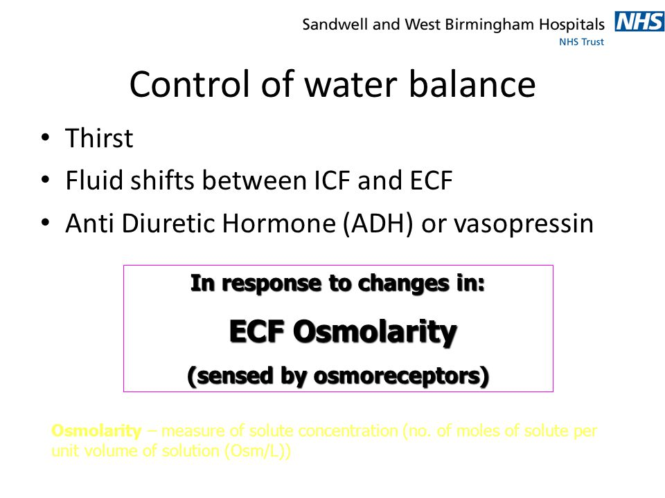 Control of water balance Thirst Fluid shifts between ICF and ECF Anti Diuretic Hormone (ADH) or vasopressin In response to changes in: ECF Osmolarity