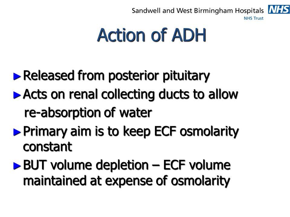 Water homeostasis Water depletion