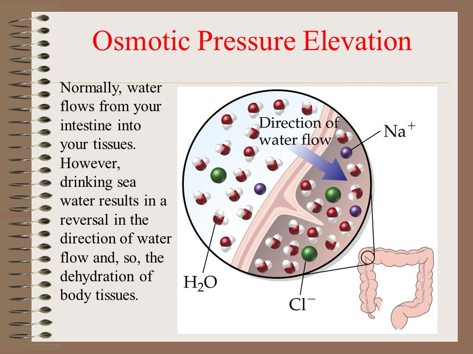 Osmotic Pressure Elevation Normally, water flows from your intestine into your tissues.