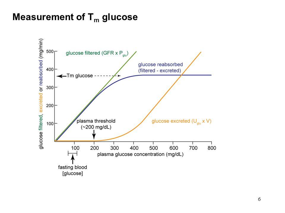 6 Measurement of T m glucose
