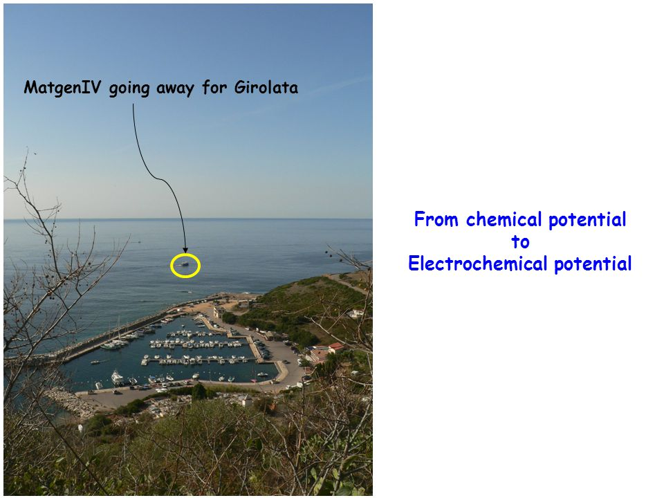 From chemical potential to Electrochemical potential MatgenIV going away for Girolata