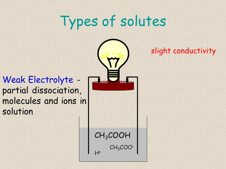 Types of solutes CH 3 COOH CH 3 COO - H+H+ Weak Electrolyte - partial dissociation, molecules and ions in solution slight conductivity