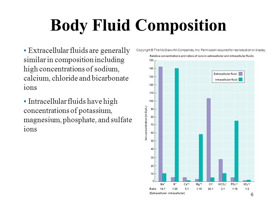 6 Body Fluid Composition Extracellular fluids are generally similar in composition including high concentrations of sodium, calcium, chloride and bica