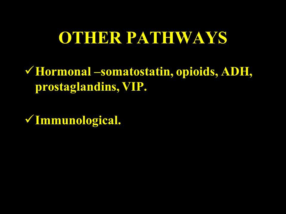 OTHER PATHWAYS Hormonal –somatostatin, opioids, ADH, prostaglandins, VIP. Immunological.