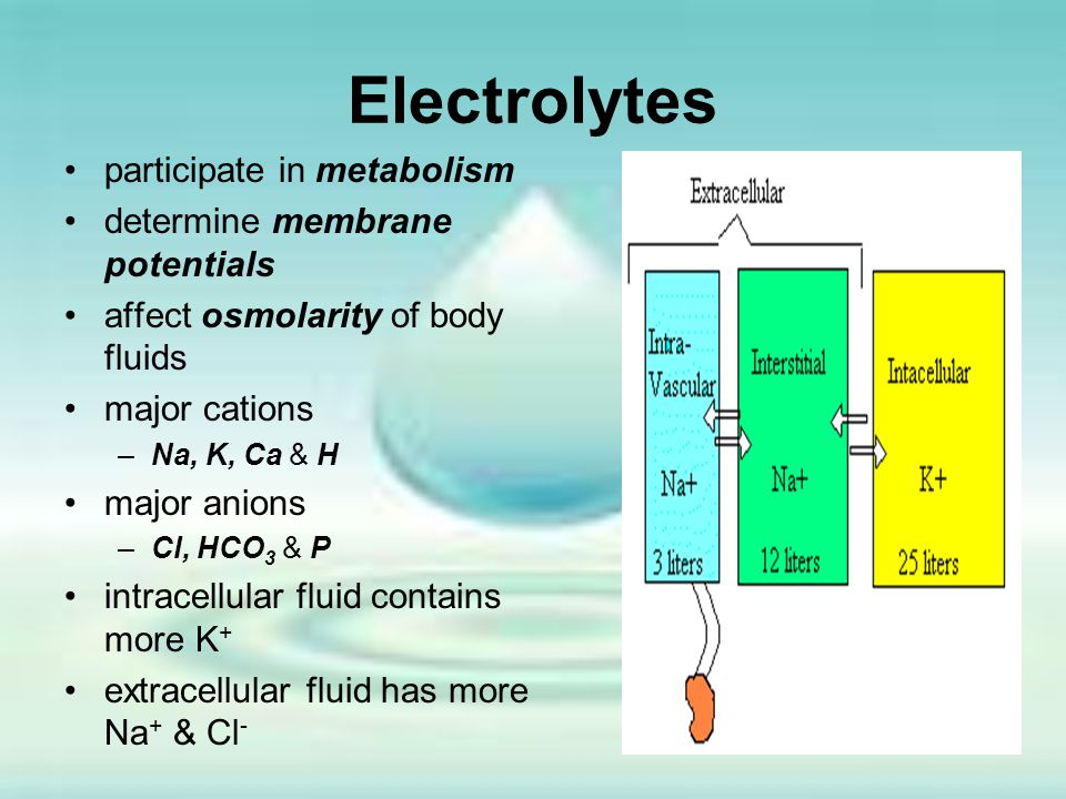 Electrolytes participate in metabolism determine membrane potentials affect osmolarity of body fluids major cations –Na, K, Ca & H major anions –Cl, H