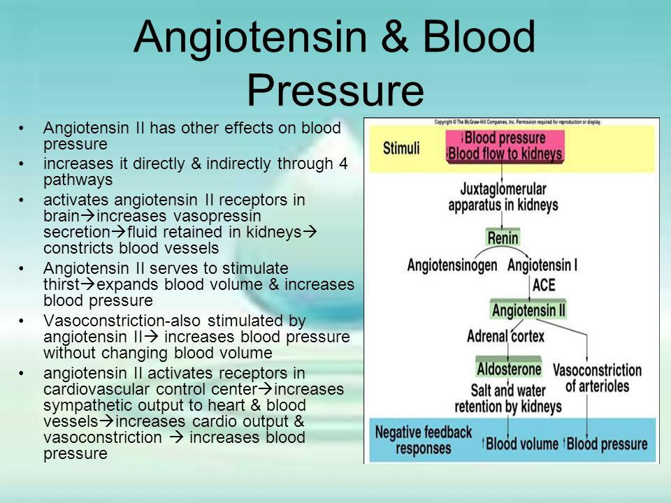 Angiotensin & Blood Pressure Angiotensin II has other effects on blood pressure increases it directly & indirectly through 4 pathways activates angiot