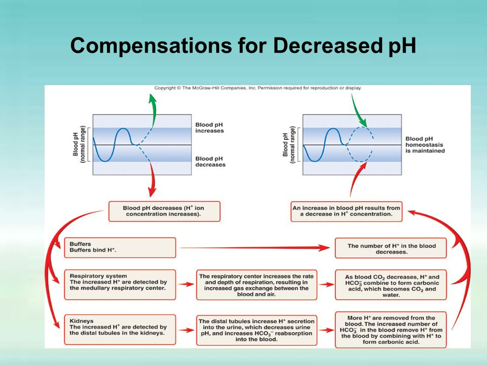 Compensations for Decreased pH