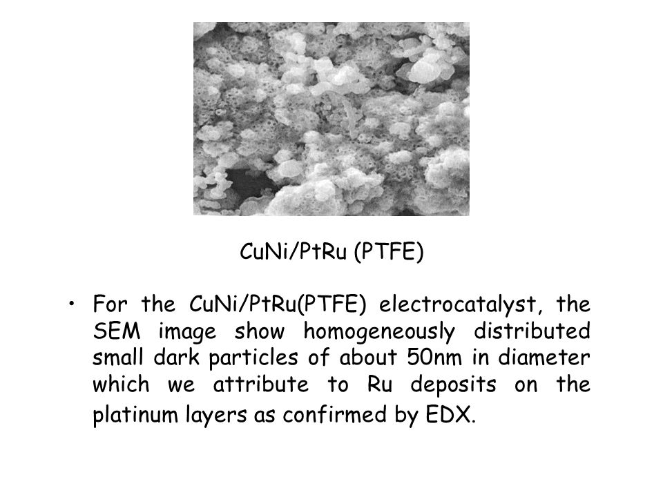 CuNi/PtRu (PTFE) For the CuNi/PtRu(PTFE) electrocatalyst, the SEM image show homogeneously distributed small dark particles of about 50nm in diameter which we attribute to Ru deposits on the platinum layers as confirmed by EDX.