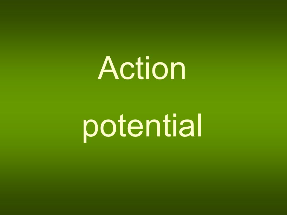 Action potential The concept of action potential denotes a fast change of the resting membrane potential caused by over-threshold stimulus which propagates into the adjacent areas of the membrane.