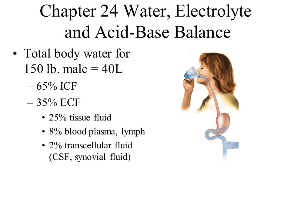 Chapter 24 Water, Electrolyte and Acid-Base Balance Total body water for 150 lb. male = 40L –65% ICF –35% ECF 25% tissue fluid 8% blood plasma, lymph