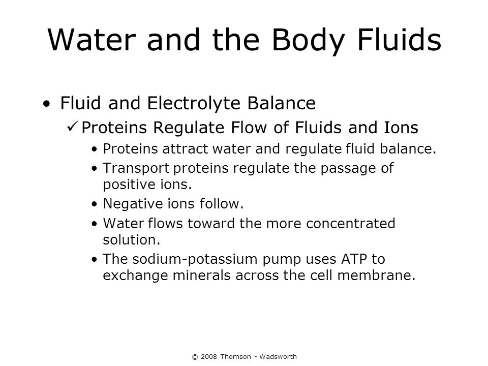 © 2008 Thomson - Wadsworth Water and the Body Fluids Fluid and Electrolyte Balance Proteins Regulate Flow of Fluids and Ions Proteins attract water an