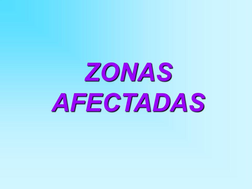 ZONAS AFECTADAS