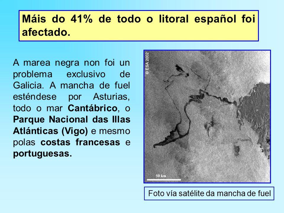 A marea negra non foi un problema exclusivo de Galicia.