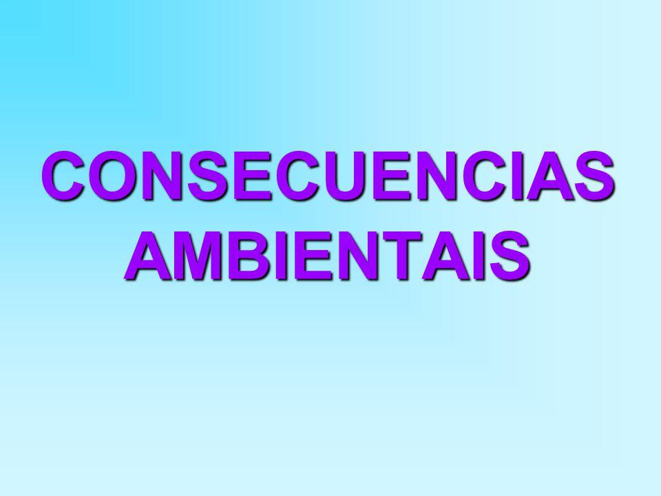 CONSECUENCIAS AMBIENTAIS