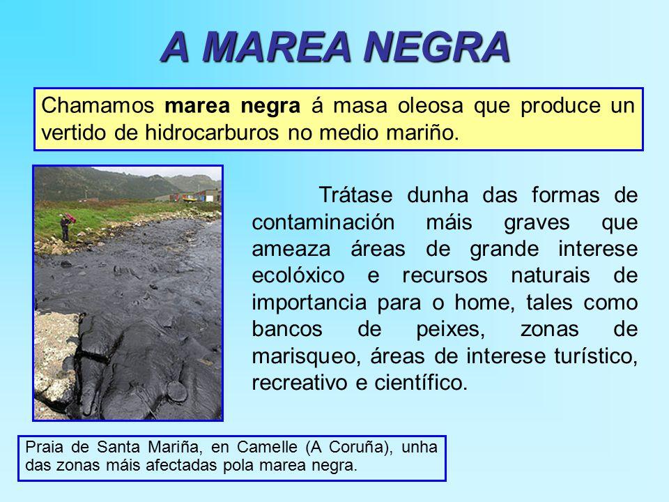 A MAREA NEGRA Praia de Santa Mariña, en Camelle (A Coruña), unha das zonas máis afectadas pola marea negra.