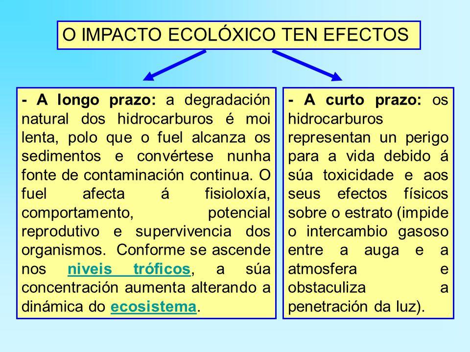 O IMPACTO ECOLÓXICO TEN EFECTOS - A longo prazo: a degradación natural dos hidrocarburos é moi lenta, polo que o fuel alcanza os sedimentos e convértese nunha fonte de contaminación continua.
