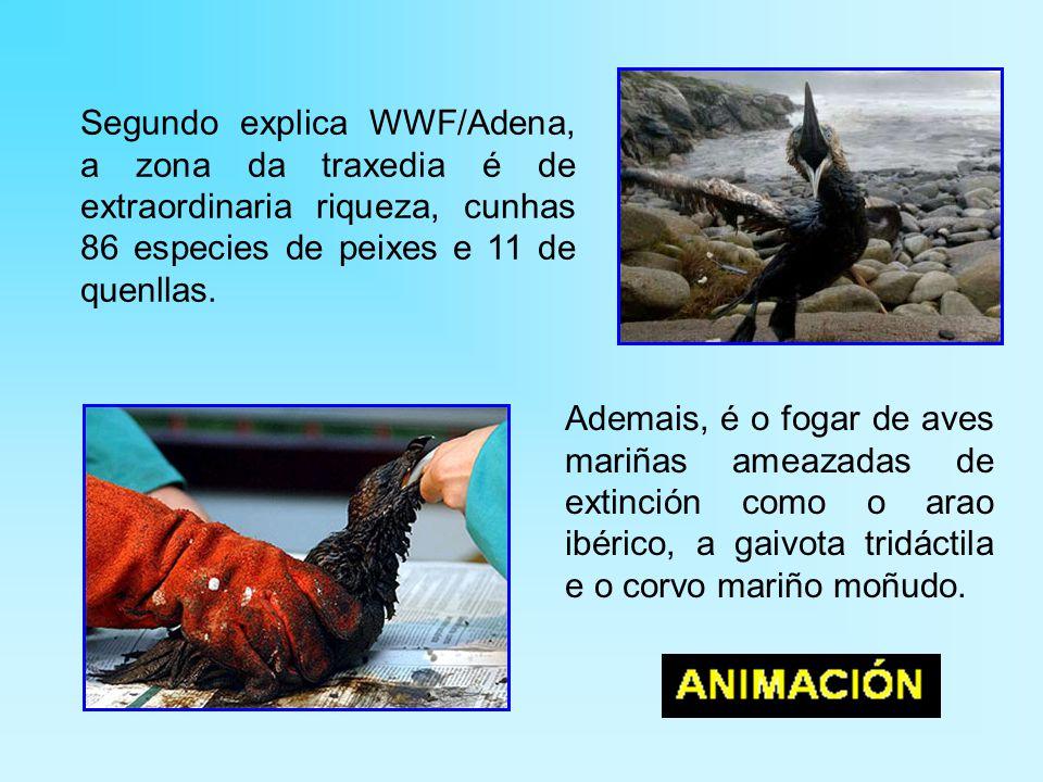 Segundo explica WWF/Adena, a zona da traxedia é de extraordinaria riqueza, cunhas 86 especies de peixes e 11 de quenllas.