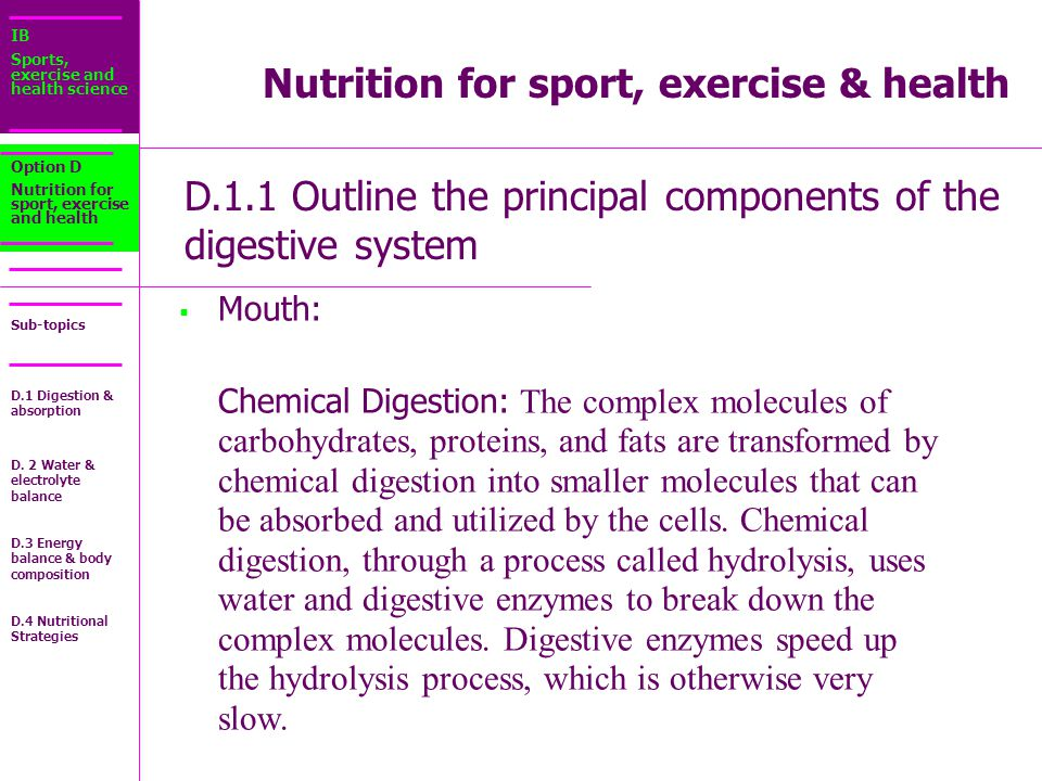 IB Sports, exercise and health science Sub-topics D.1.1 Outline the principal components of the digestive system Option D Nutrition for sport, exercise and health  Mouth: Mouth: Chemical Digestion: The complex molecules of carbohydrates, proteins, and fats are transformed by chemical digestion into smaller molecules that can be absorbed and utilized by the cells.