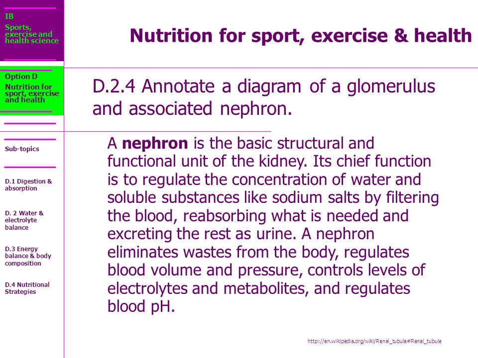 IB Sports, exercise and health science Sub-topics D.2.4 Annotate a diagram of a glomerulus and associated nephron.