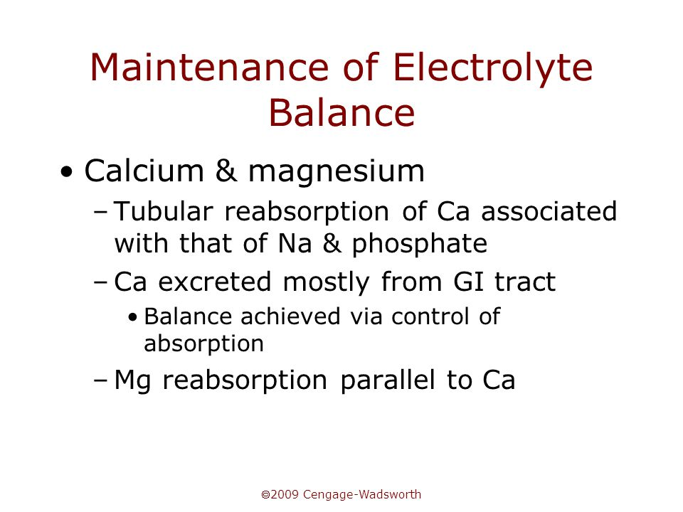  2009 Cengage-Wadsworth Maintenance of Electrolyte Balance Calcium & magnesium –Tubular reabsorption of Ca associated with that of Na & phosphate –Ca