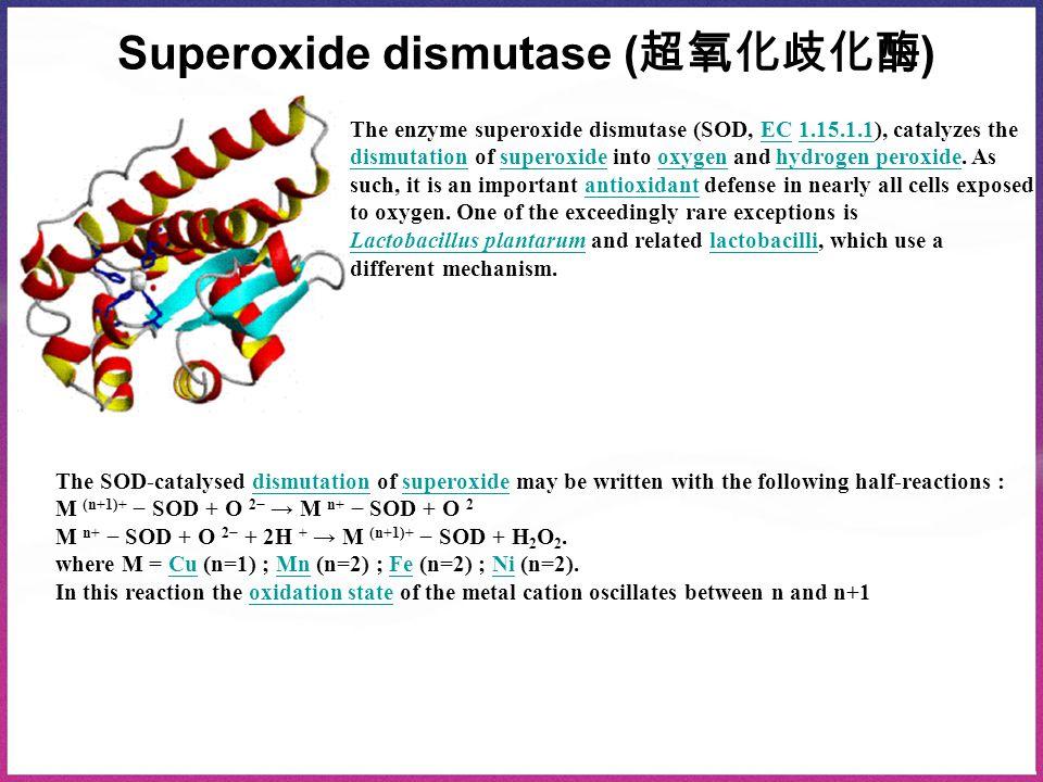Superoxide dismutase ( 超氧化歧化酶 ) The enzyme superoxide dismutase (SOD, EC 1.15.1.1), catalyzes theEC1.15.1.1 dismutationdismutation of superoxide into