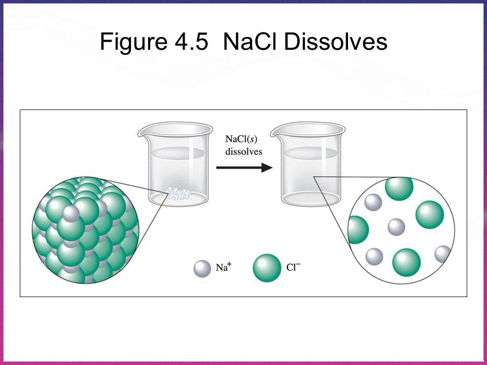 Figure 4.5 NaCl Dissolves