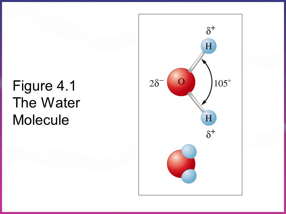 Figure 4.1 The Water Molecule