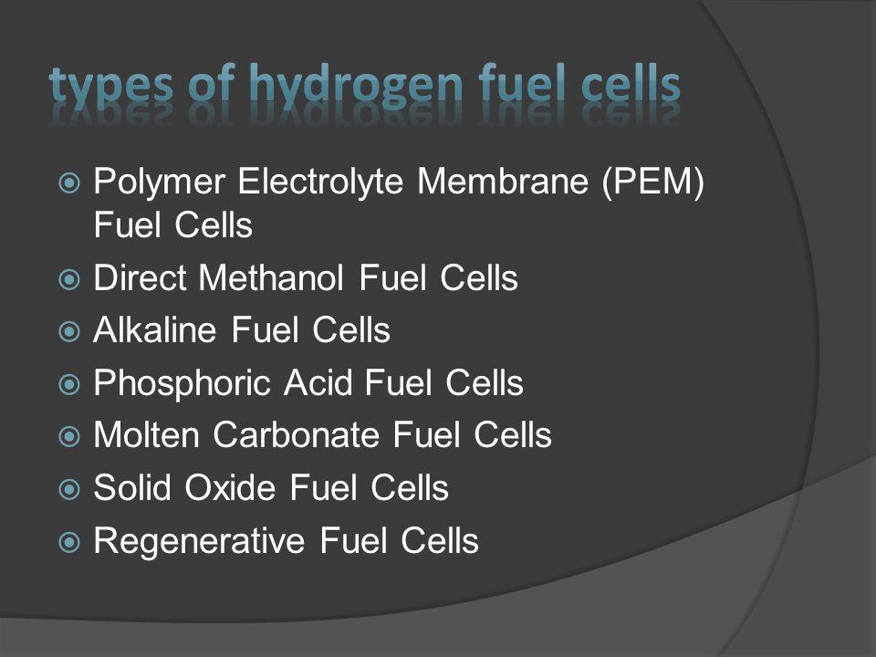  Basic Elements: Fuel for the Future.Miramar High School.