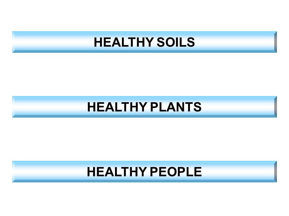 HEALTHY SOILS HEALTHY PLANTS HEALTHY PEOPLE