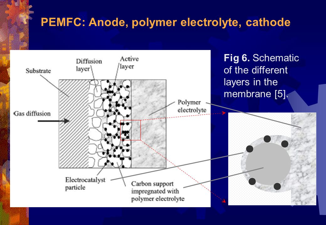 PEMFC: Anode, polymer electrolyte, cathode Fig 6. Schematic of the different layers in the membrane [5].