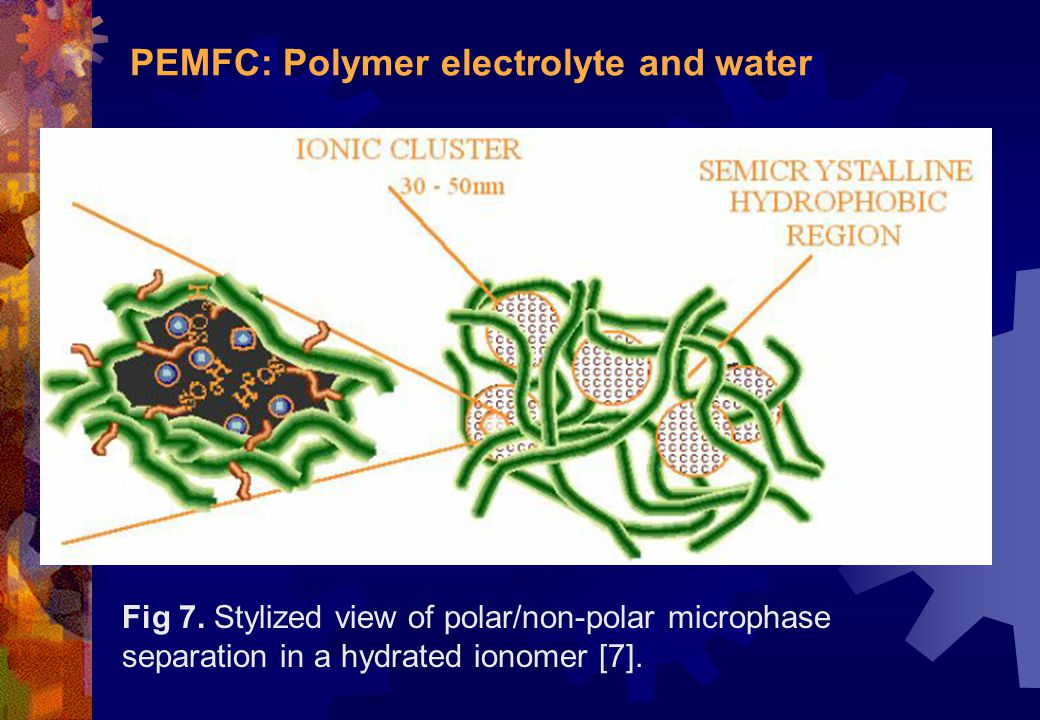PEMFC: Polymer electrolyte and water Fig 7. Stylized view of polar/non-polar microphase separation in a hydrated ionomer [7].