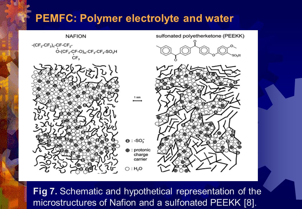 PEMFC: Polymer electrolyte and water Fig 7. Schematic and hypothetical representation of the microstructures of Nafion and a sulfonated PEEKK [8].