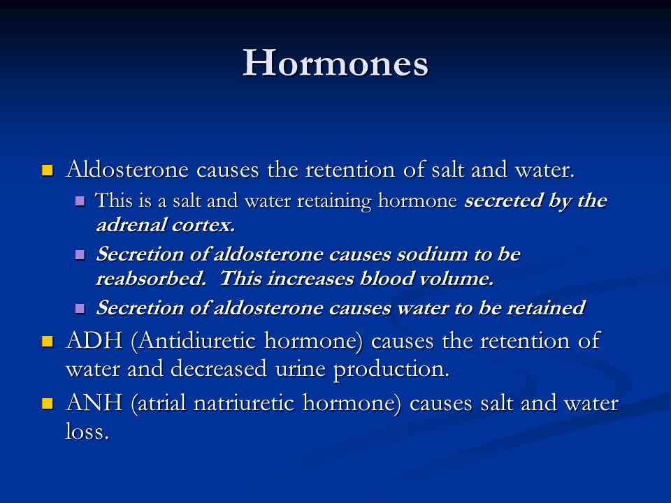 Hormones Aldosterone causes the retention of salt and water. Aldosterone causes the retention of salt and water. This is a salt and water retaining ho