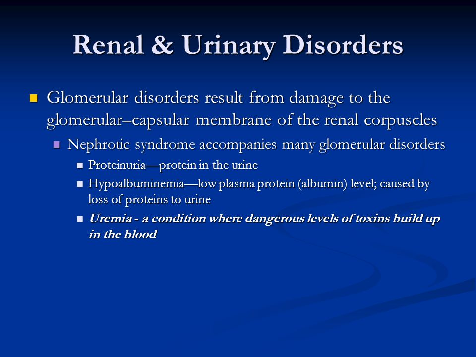 Renal & Urinary Disorders Glomerular disorders result from damage to the glomerular–capsular membrane of the renal corpuscles Glomerular disorders res