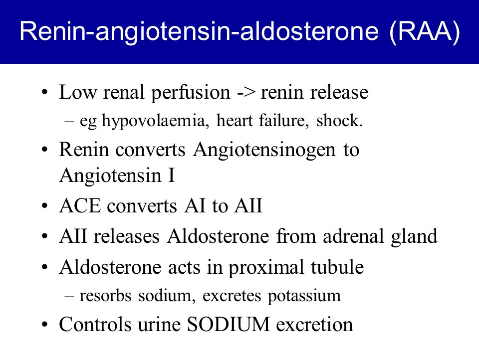 Renin-angiotensin-aldosterone (RAA) Low renal perfusion -> renin release –eg hypovolaemia, heart failure, shock.