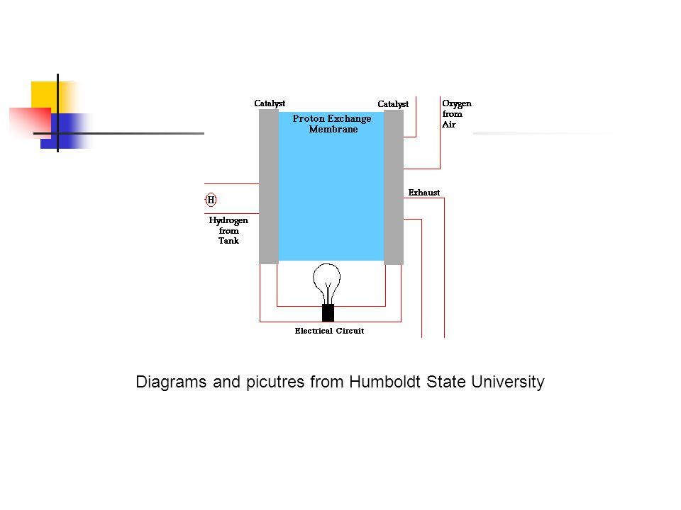 Diagrams and picutres from Humboldt State University