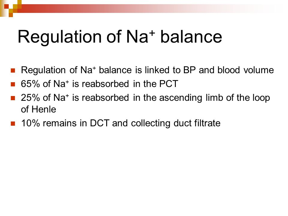 Regulation of Na + balance Regulation of Na + balance is linked to BP and blood volume 65% of Na + is reabsorbed in the PCT 25% of Na + is reabsorbed