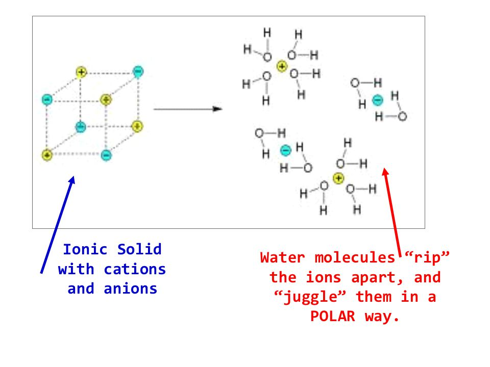 Ionic Solid with cations and anions Water molecules rip the ions apart, and juggle them in a POLAR way.