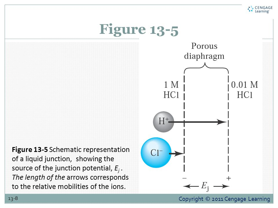 Copyright © 2011 Cengage Learning 13-8 Figure 13-5 Figure 13-5 Schematic representation of a liquid junction, showing the source of the junction potential, E j.