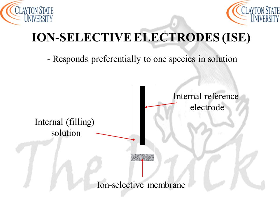 - Responds preferentially to one species in solution Internal reference electrode Ion-selective membrane Internal (filling) solution ION-SELECTIVE ELECTRODES (ISE)