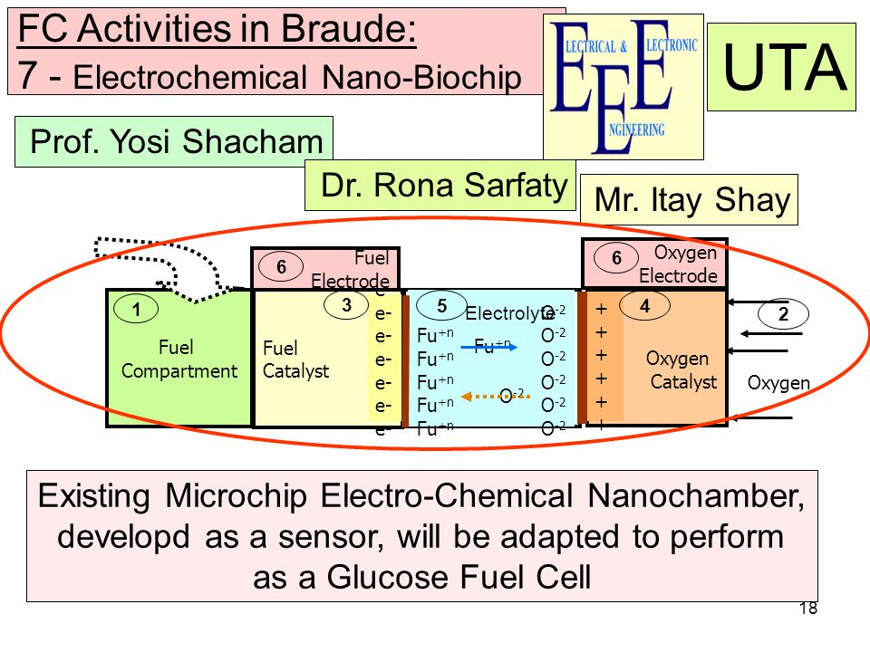 18 FC Activities in Braude: 7 - Electrochemical Nano-Biochip Prof.
