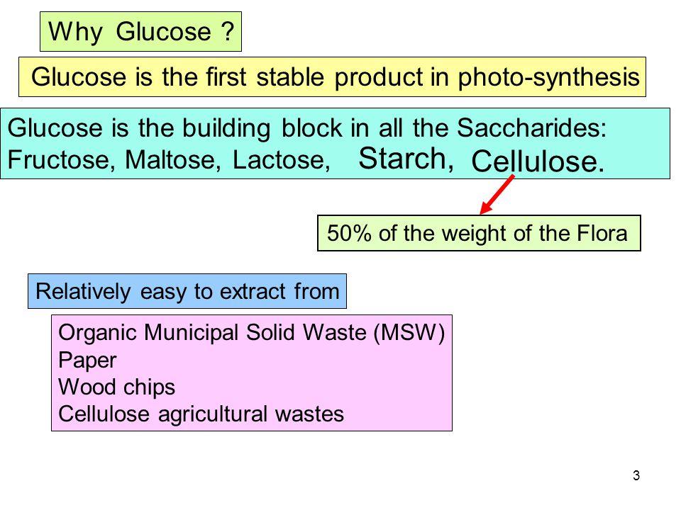 3 Why Glucose .