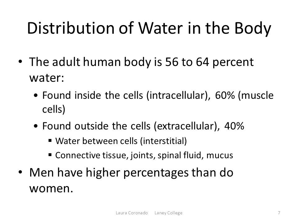 Distribution of Water in the Body The adult human body is 56 to 64 percent water: Found inside the cells (intracellular), 60% (muscle cells) Found out