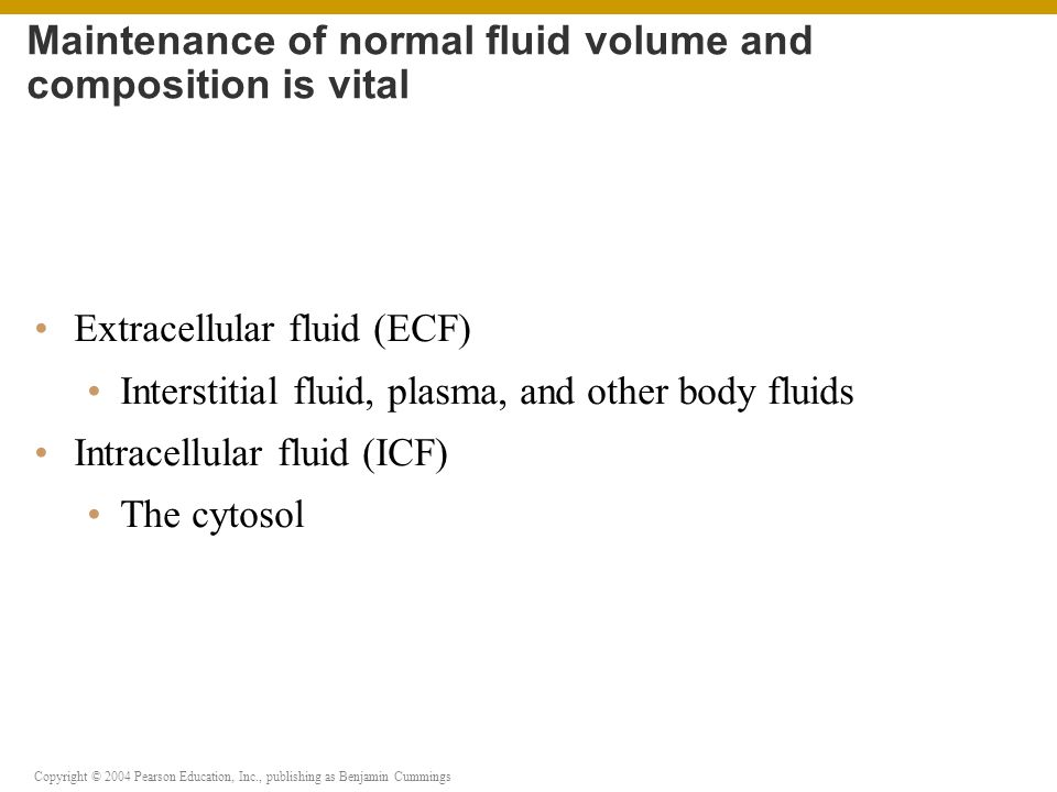 Copyright © 2004 Pearson Education, Inc., publishing as Benjamin Cummings Hyponatremia Na + concentration in the ECF is reduced (overhydration) Hypernatremia Na + in the ECF is abnormally high Dehydration Develops when water loss outpaces water gains Water excess and depletion