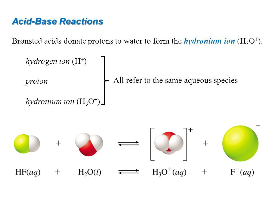 Acid-Base Reactions Brønsted acids donate protons to water to form the hydronium ion (H 3 O + ). hydrogen ion (H + ) proton hydronium ion (H 3 O + ) A