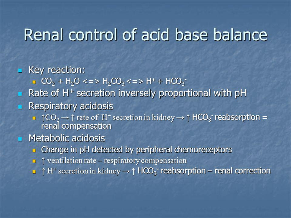 Renal control of acid base balance Key reaction: Key reaction: CO 2 + H 2 O H 2 CO 3 H + + HCO 3 - CO 2 + H 2 O H 2 CO 3 H + + HCO 3 - Rate of H + sec