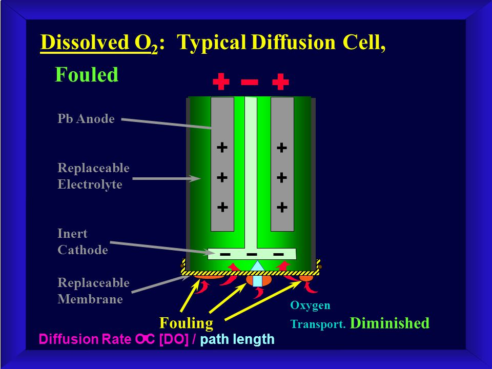 Dissolved O 2 : Typical Diffusion Cell, Fouled Fouling Pb Anode Replaceable Electrolyte Inert Cathode Replaceable Membrane Oxygen Transport. Diminishe