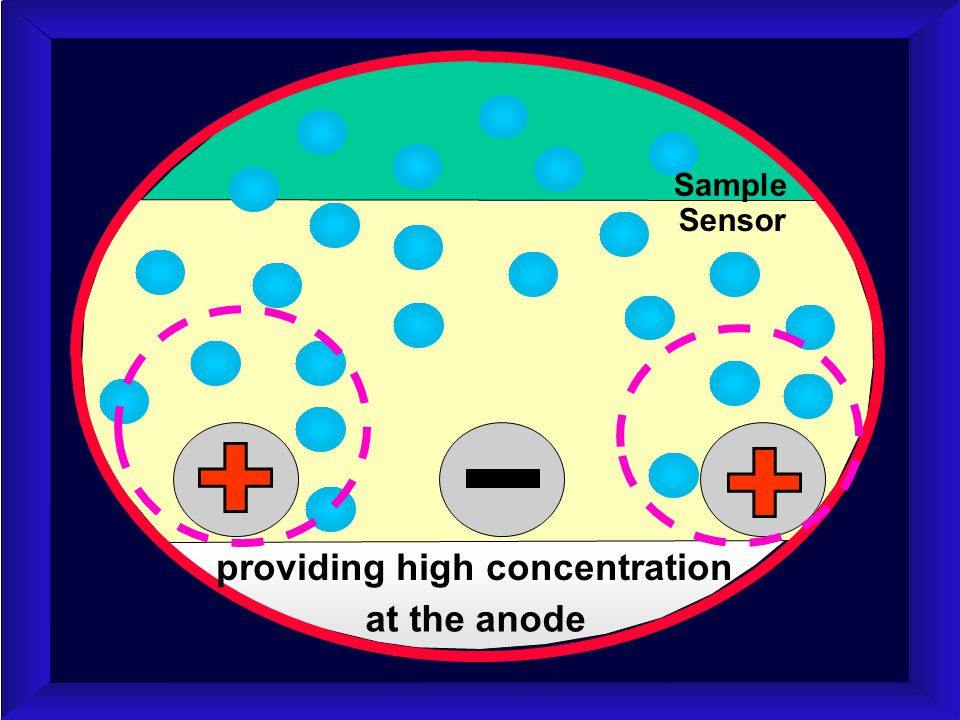 providing high concentration at the anode Sensor Sample