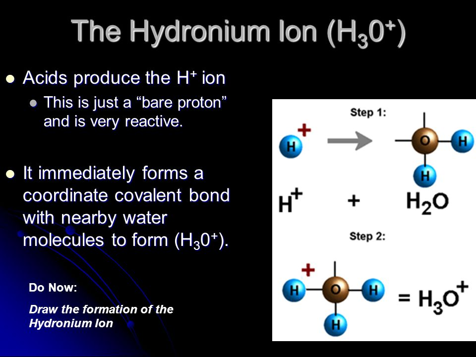 Organic Acids Contain carbon Contain carbon Only one of the hydrogens is acidic and dissociates in solution Only one of the hydrogens is acidic and dissociates in solution Ex:Acetic Acid Ex:Acetic Acid HC 2 H 3 O 2 or CH 3 COOH HC 2 H 3 O 2 or CH 3 COOH